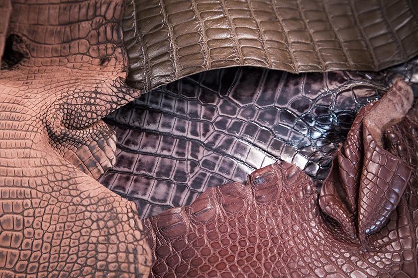 Cuirs pour bracelets de montre - Alligator, crocodile et caïman