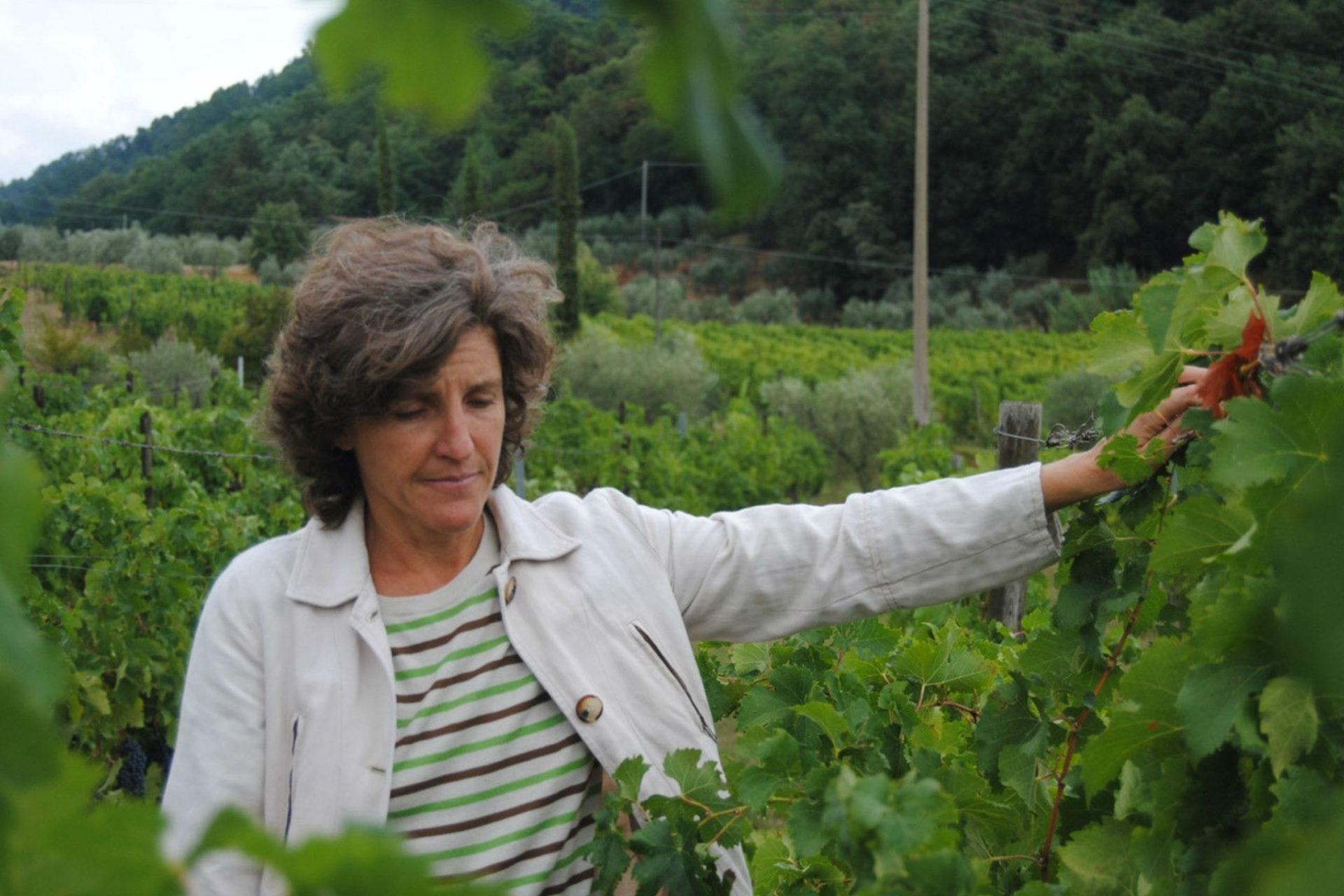 Sélection de vin au restaurant Le George - Tenuta di Valgiano - Laura di Collobiano (source : Pieksman Biologische Wijnen)